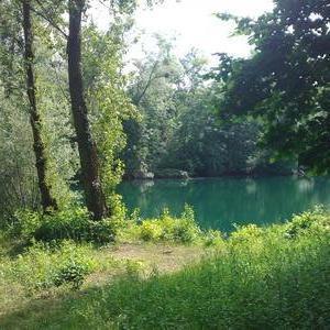 idyllischer absolut ruhiger !! Waldsee